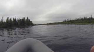 Клуб Ристикент, река Нота Мурманская область / The Nota River Murmansk region