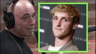 Joe Rogan Reacts to Logan Paul Slap KO Video