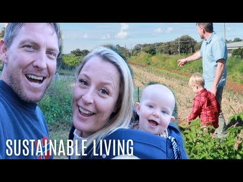HOMESTEADING Family of 7 BUILD THIER DREAM FARM (BACKYARD FARMING) Sustainable Living