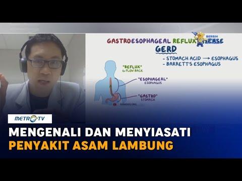Download Mengenali dan Menyiasati Penyakit Asam Lambung