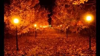 Adrian Eftimie - Autumn Feelings (September 2012)