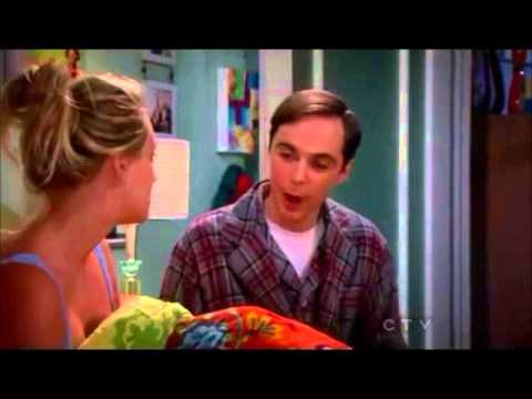 Big Bang Theory- Homeostasis