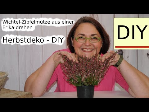 herbstdeko-diy:-erika-als-wichtel-mit-zipfelmütze-🧙