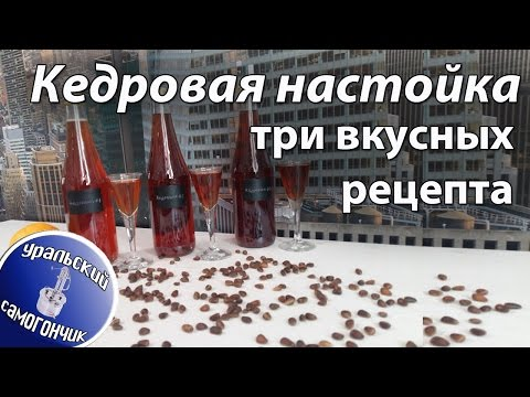 Настойка на кедровых орешках: польза, применение, лечение