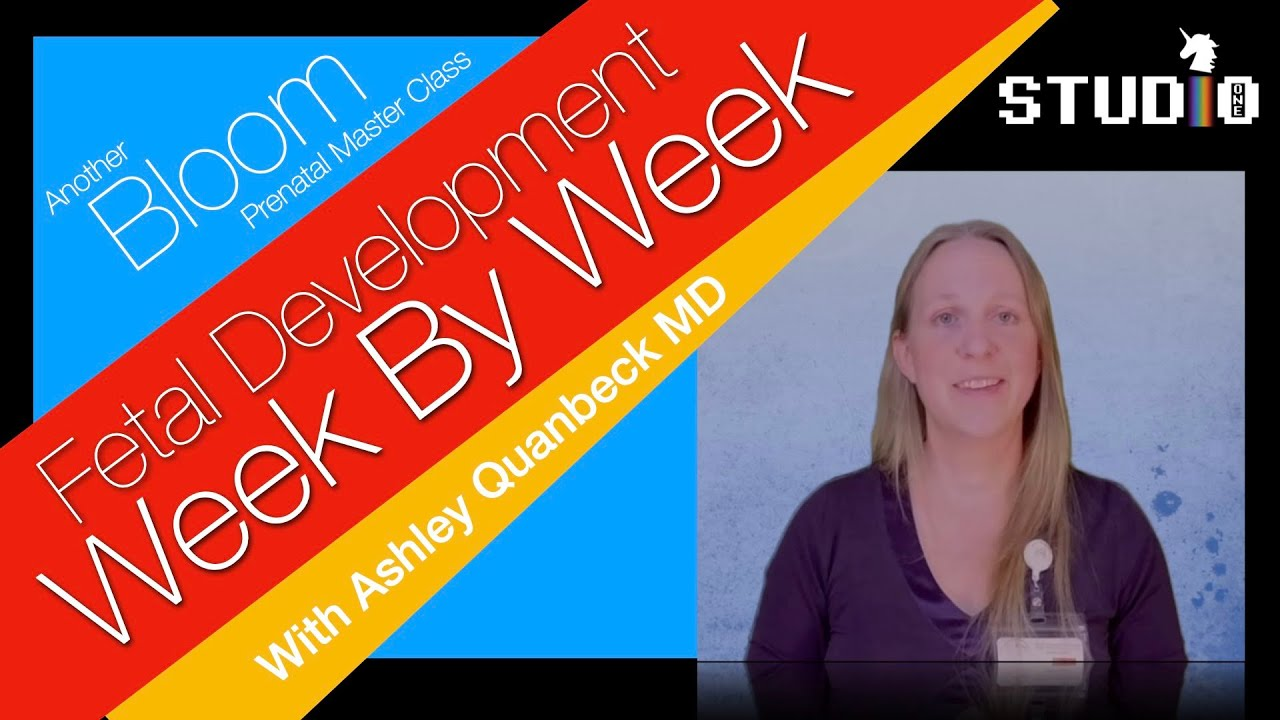 Pregnancy From Conception to Delivery With Dr. Ashley Quanbeck