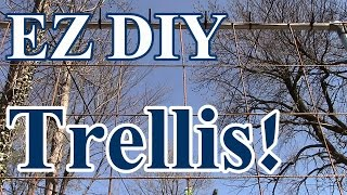 2 Min Tip: Ez Diy Trellis To Grow Tomatoes, Watermelon, Squash & Pumpkins Vertically