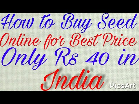 6c4d96014 How to Buy Seed Online for Best Price only Rs 40 in India - YouTube