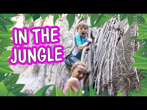 WELCOME TO THE JUNGLE | TORTOLA BRITISH VIRGIN ISLANDS | DISNEY CRUISE