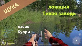 Русская рыбалка 4 озеро Куори Щука на поппер