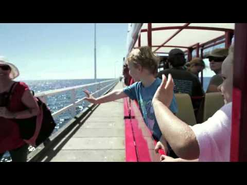 Busselton Jetty Train and Underwater Observatory. What will you EXPERIENCE?