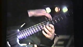 Brian Bromberg Peavey B quad Bass 90