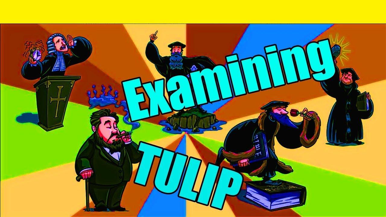 Examining Calvinist TULIP Prooftexts
