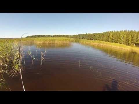 рыболовная база озеро пионерское