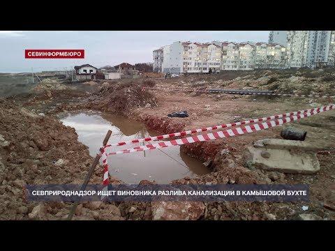 НТС Севастополь: Севприроднадзор ищет виновника разлива фекалий в районе Камышовой бухты