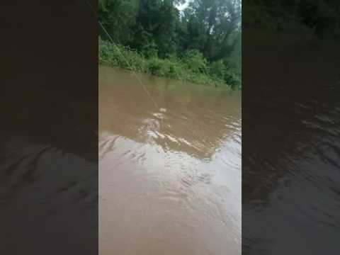 Sabine River Kats