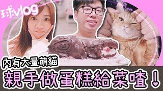 為美好的菜喳獻上蛋糕!【球Vlog】Ft.菜喳、哈梓喵