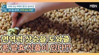 면역력 상승을 도와줄 콩 발효 식품이 있다!?