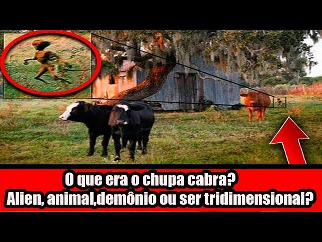 O que era o chupa cabra? Alien, animal,demônio ou ser tridimensional