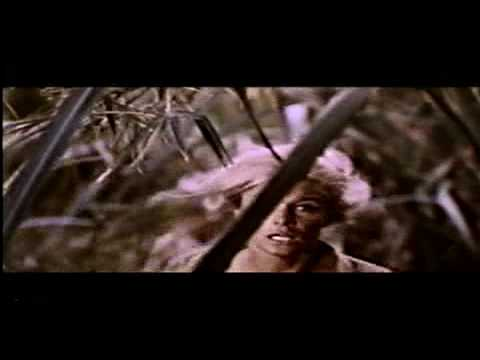 DARK OF THE SUN(1967) Original Theatrical Trailer