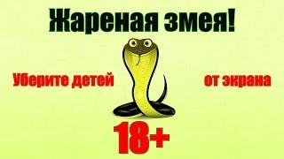 Жареная змея