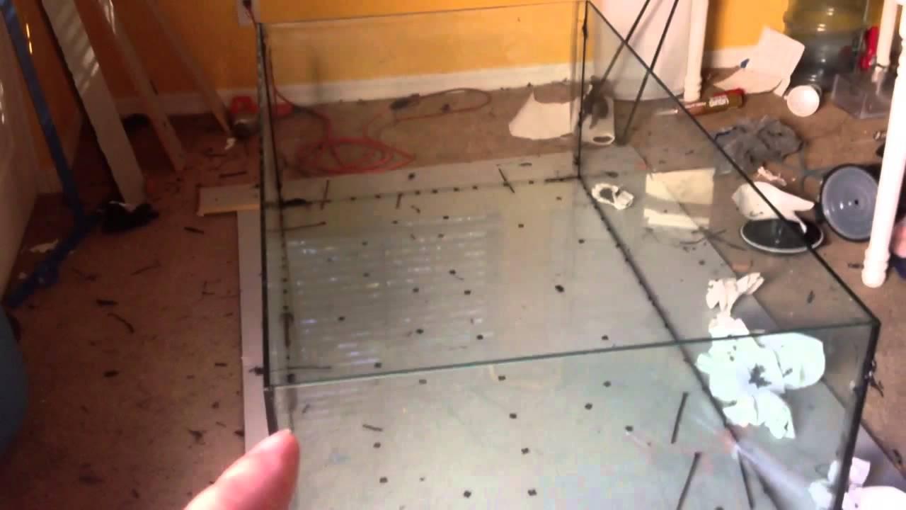 Tank build update diy glass aquarium build youtube for Fish tank ice method