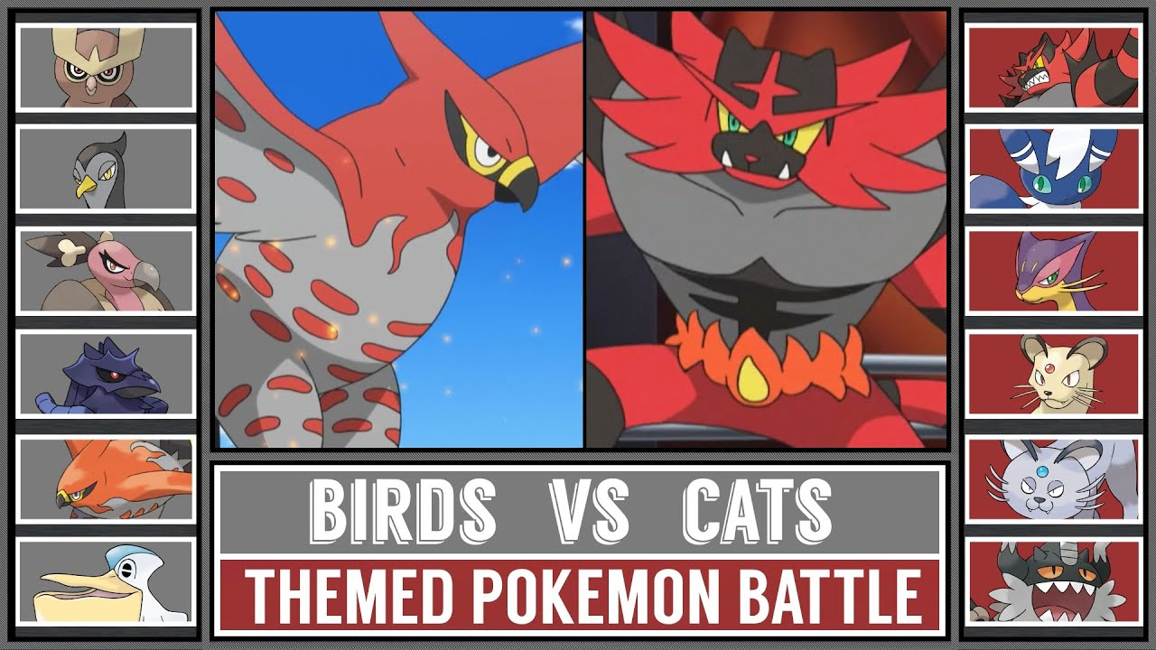 BIRD vs CAT POKÉMON - Themed Battle