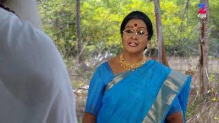Naagini - ನಾಗಿಣಿ - Indian Kannada Story - EP 292 - Mar 28, '17 - #zeekannada TV Serial - Webisode