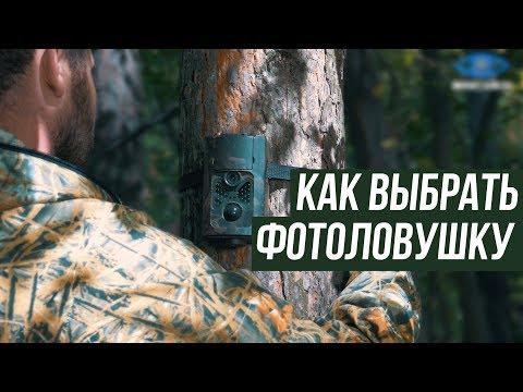 Купить фотоловушку   Фотоловушки для охоты цена   MiniCam24.ru