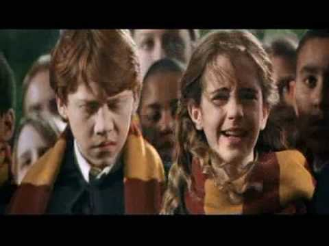 are harry and hermione dating in real life