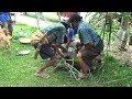 Seekor Babi dikurbankan untuk menutup Ritual di Toraja musim panen 2017