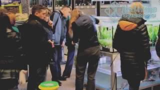 Продажа аквариумных растений в СПб(Продажа аквариумных растений в СПб. Покупатели оценили качество и уровень обслуживания. Самый свежий прайс..., 2013-11-17T09:55:53.000Z)