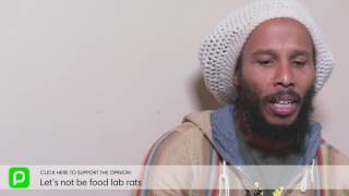 Ziggy Marley interview: Let's not be food lab rats