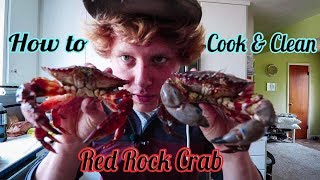 How to Cook and Clean Red Rock Crab