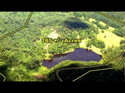 Cabin And Land For Sale - 165 Acres - North Georgia