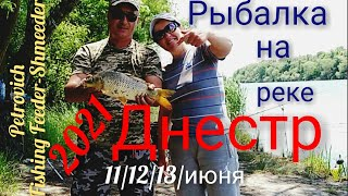 Рыбалка на реке Днестр 2021 Ловля карпа сазана 11 12 13 июня