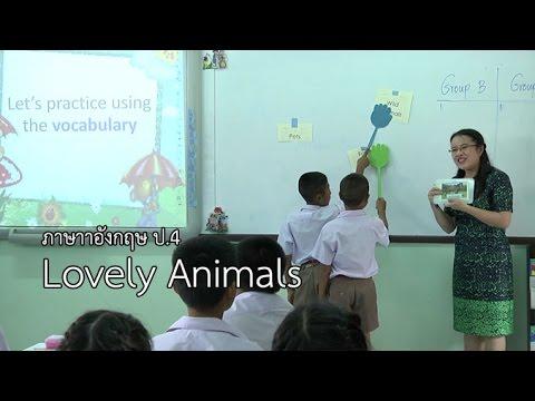 ภาษาอังกฤษ ป.4 Lovely Animals ครูประทินทิพย์ สสีสองสม