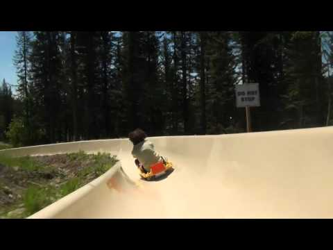 Alpine Slide At Whitefish Mountain Resort