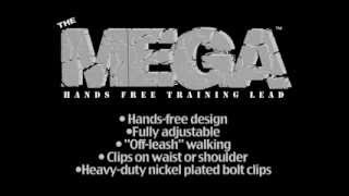 The Mega Hands-free Training Lead For Training,walking,jogging Or Hiking