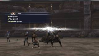 "The Last Remnant: ""Ultimate PC Grind"""