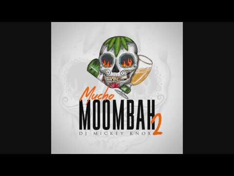 DJ Mickey Knox- Mucho Moombah 2