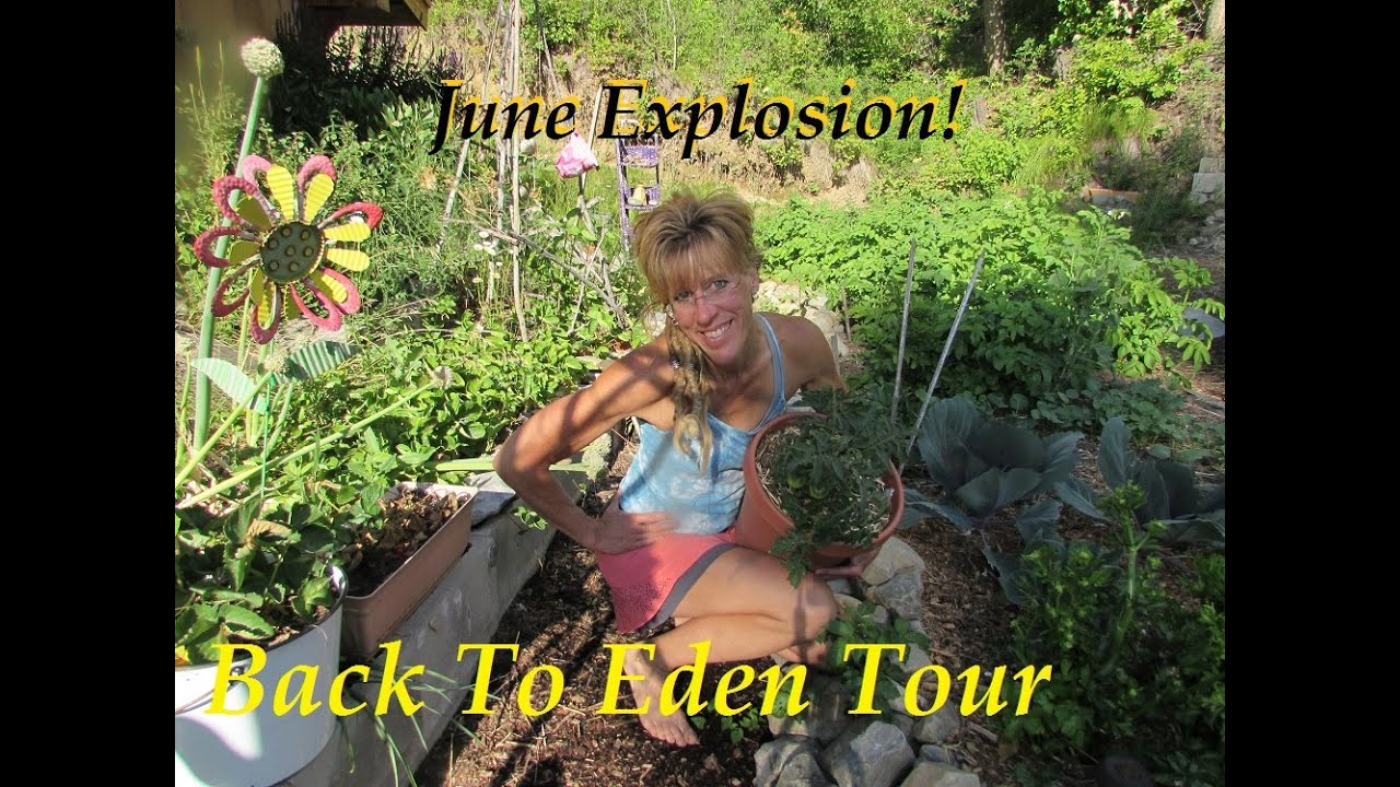 Back To Eden Tour Fully Organic June Growth Youtube