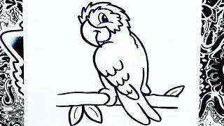 como dibujar un loro | how to draw a parrot