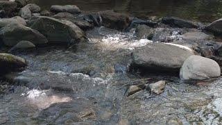 Repeat youtube video YOSOY – La Muntanya i l'Aigua