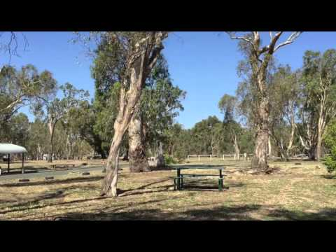 Rotary Park Free Camping - Echuca Victoria - YouTube