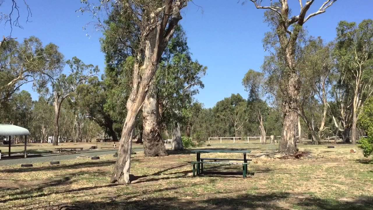 Rotary Park Free Camping - Echuca Victoria