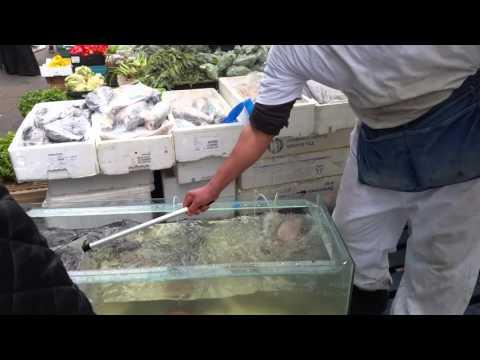 Whitechapel Market East London Selling Live Fish.