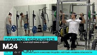 Россиянам предложили заниматься спортом прямо в офисах - Москва 24