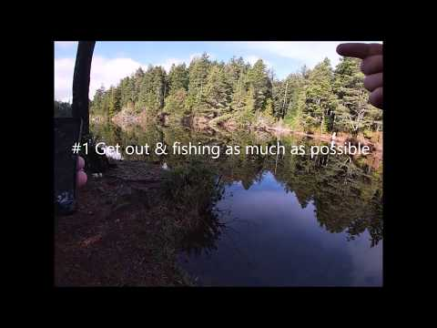 5 Bass Fishing Tips I Wish I Knew When I First Started Bass Fishing (Oregon Bass Fishing)