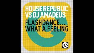 House Republic Vs. DJ Amadeus - Flashdance... What A Feeling (Ego Records)