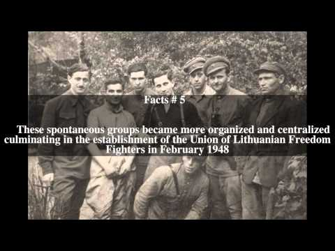 Lithuanian partisans Top # 8 Facts